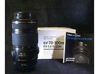 Canon 70-300 lens