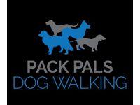 Pack Pals Dog Walking