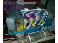 Hamster with cage, toys and months food