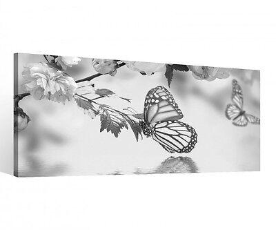 Leinwand 1 Tlg Schmetterling schwarz weiß Blumen Blume Bilder Wandbild 9C096 ()