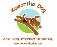 Kawartha Dog - a fun, loving environment for your dog.