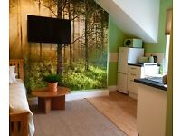 Great studio in Newcastle for professional or mature Student