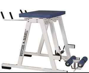 REVERSE HYPER (Westside Barbell) **perfect condition** Peterborough Peterborough Area image 1