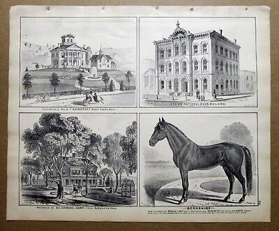 Orig 1876 Lithograph Beers Atlas   Berkshire County Mass Davenport  Adams Bank