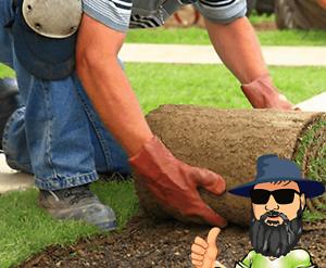 Turf Brisbane Turf Supplies Mini Diggers Stump Grinding Bobcat Logan Central Logan Area Preview