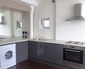 Luxury one bedroom flat to rent in Fulham Broadway area