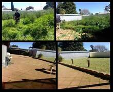 Lawn Care⁄Edging & Gardens With Quality Why Look Anywhere Else? Elizabeth Playford Area Preview