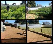 Once Off Or Ongoing Gardening and Landscaping Grand Properties Elizabeth Playford Area Preview