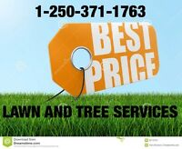Best Price Lawn and Tree Services in Merritt and Kamloops