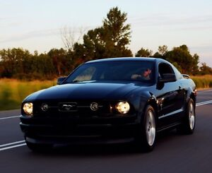 2006 Mustang V6- pony package NEGO