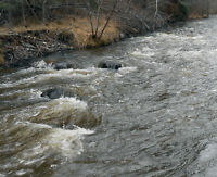 Placer gold claim on Tranquille river (Kamloops)