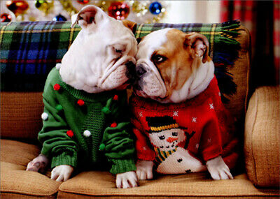 Avanti Christmas Bulldogs in Sweaters Box of 10 Funny / Humo