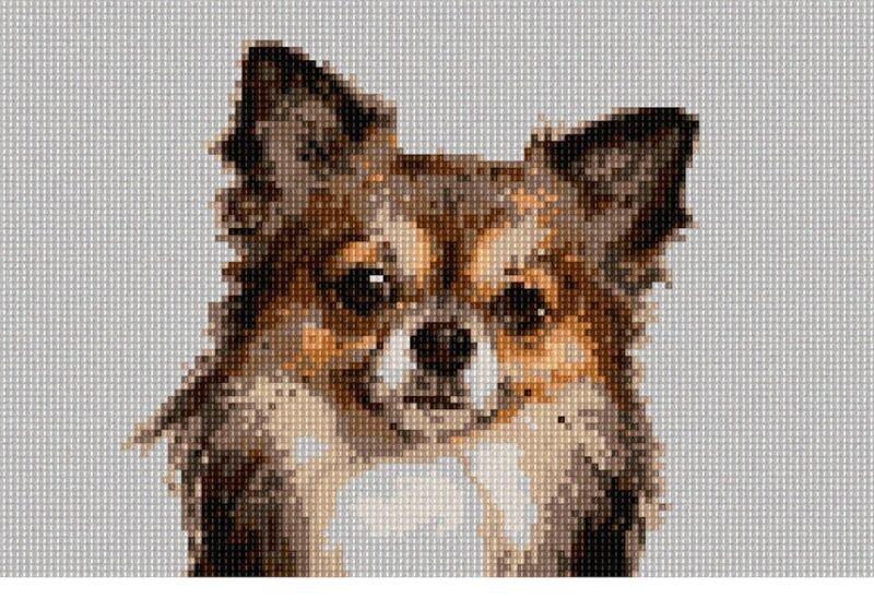 Chihuahua  Needlepoint Kit or Canvas (Dog/Animal)