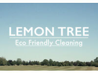 Cleaner for Eco Friendly Company - £8 per hour - 10 Hours a week