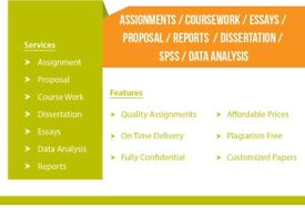 URGENT HELP - ESSAY/DISSERTATION/ASSIGNMENTS/PROPOSALS/REPORTS/SPSS/IT/STATISTICS - WRITING/EDITING