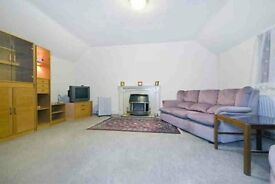 Spacious One Bedroom Flat - Streatham Hill