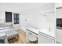 Studio flat in Coburg Crescent, Tulse Hill, SW2