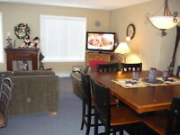 BOOK Christmas Family fun at BIG WHITE Deluxe Village 4 BR Condo