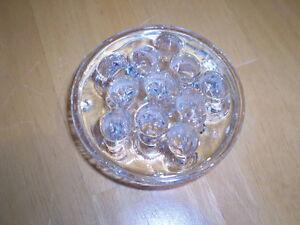 GLASS FLOWER FROG Windsor Region Ontario image 1