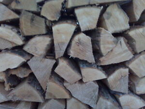 "Fresh cut mixed hardwood firewood for sale - ""Unseasoned"""