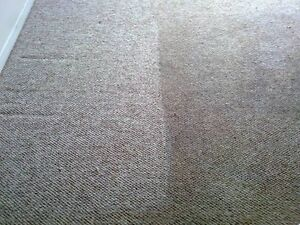 Carpet Cleaning. Steam Cleaning By Winmar, London, ON London Ontario image 7