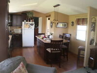 Ellicottville luxury mobile home
