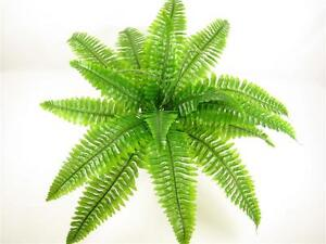 Small-Artificial-Silk-Boston-Fern-Plant-Flat-pack