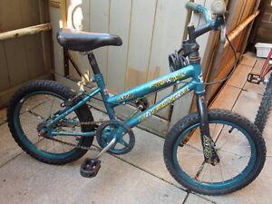 Green Supercycle Bike