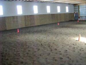Horse Board Strathcona County Edmonton Area image 3