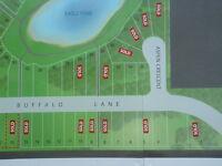 Buffalo Lake Property
