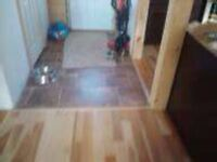 flooring installs and much more