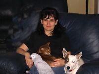 pension pour chiens, chats, oiseaux, rongeurs, furets reptiles e
