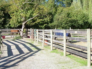 Full and Semi Board Available-South Surrey/Langley
