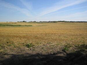 Farmland Saskatchewan Ottawa Ottawa / Gatineau Area image 2