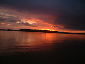 Balsam lake Kawartha Private Sunset Cottage Rental 416-693-7579