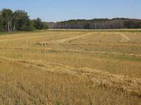 Farmland Saskatchewan