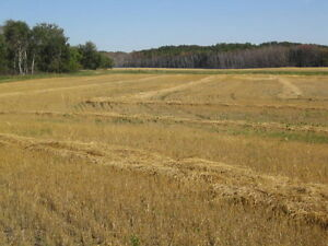 Farmland Saskatchewan Ottawa Ottawa / Gatineau Area image 1