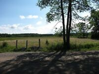 2 acre Building Lot - Washago area