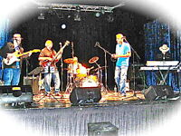 Rockin' Blues Revue Band -  Your Best choice for A Party Band.
