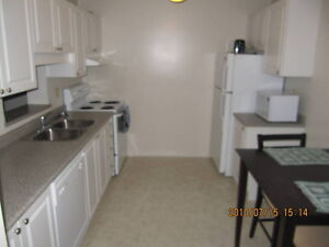FURNISHED ACCOMMODATIONS - Your home away from home! London Ontario image 2