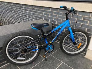 """Louis Garneau BLUE Kids Bike: 20"""" wheels"""