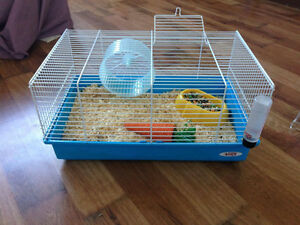 5 Month old Hamster, cage, food, toys and bedding for sale.