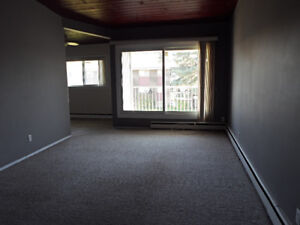 LARGE SOUTH-CENTRAL 2 BDRM - FREE INTERNET