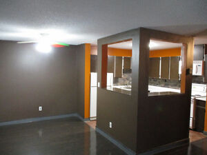 South Side Condo / Millwoods / available Sept.1st