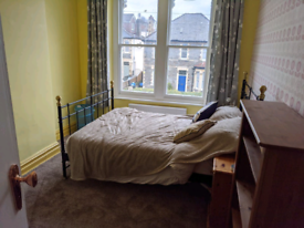 Short term large double room in Redland