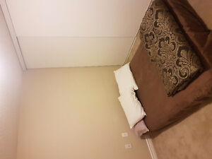 SUBLETTING ONE BEDROOM IN LUXURIOUS 700 KING NEW BUILDING London Ontario image 2
