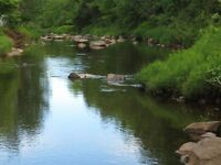219 acres with river frontage