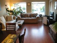 Luxury Apt Downtown Moncton - 1 bedroom available in 2 bedroom