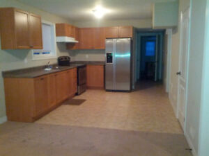 Above Ground Basement Apartment for Rent Util, TV, WiFi Incl