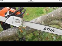 TREE SURGEON-FREE QUOTES-FAST FRIENDLY HASSLE FREE SERVICE
